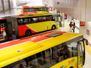 El Gobierno balear avanza en la integración de transporte urbano e interurbano